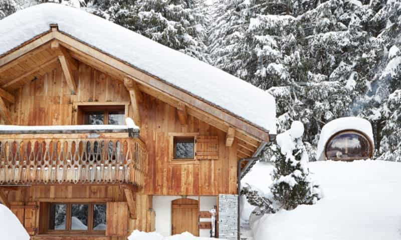 log-cabin-in-pine-forest