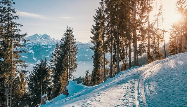 image of a sunny snow trail