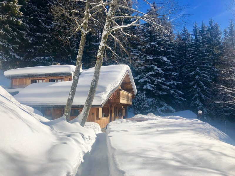 Winter wonderland ski chalet Chamonix