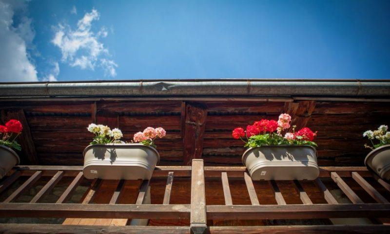 Front Door (2) - Balcony Flowers