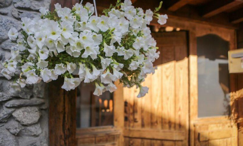 Front door (1) - with flowers